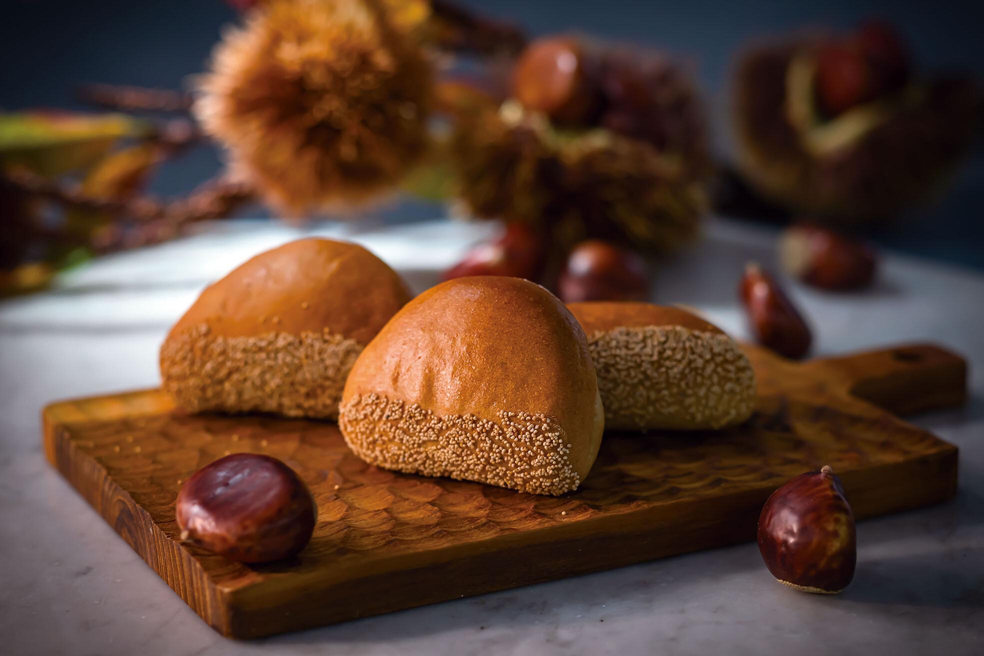 【期間限定】9月の新作パンのご紹介