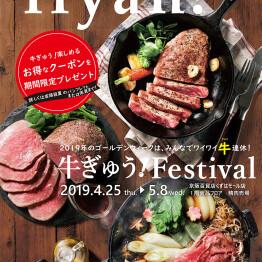 牛ぎゅう!Festival