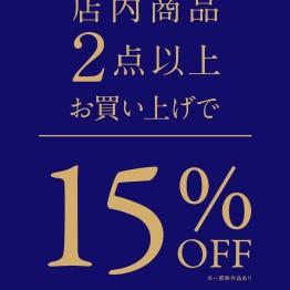 店内商品 2点15%OFF!!!