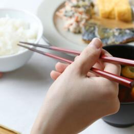 日本の美しい色を感じるお箸