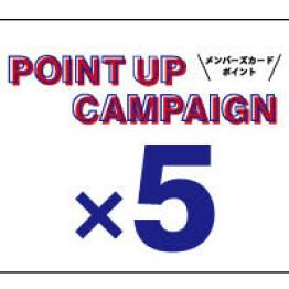 ポイントアップキャンペーン開催!!