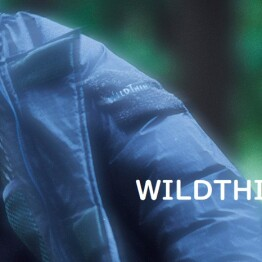 WILD THINGS(ワイシン) 通販開始