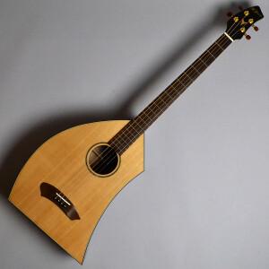 誰でも5分で弾けるギター!?「一五一会」のご紹介!